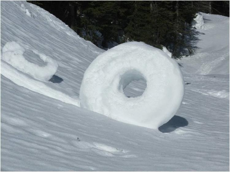 śnieżne pączki