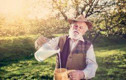 Mleko - tajemnica długowieczności i doskonałego zdrowia Skandynawów