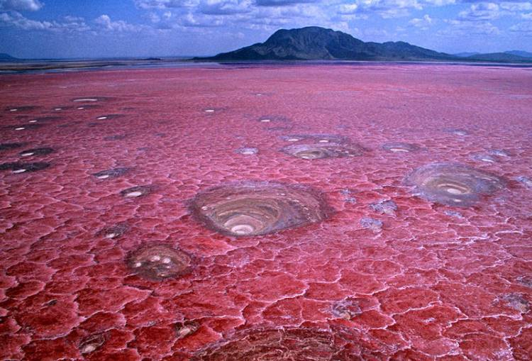 Jezioro Natron w Tanzanii