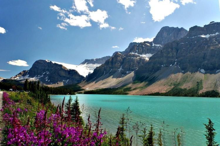 kolorowe jeziora na świecie - jezioro peyto w Kanadzie