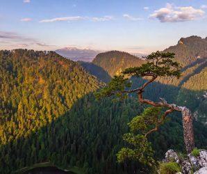 Rytm Gór – odkryj piękno polskich gór