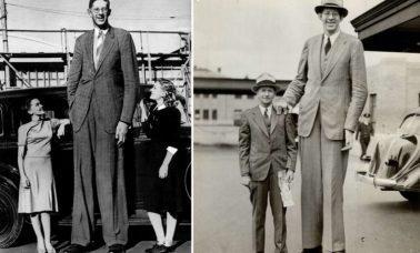 Robert Wadlow - najwyższy człowiek w historii