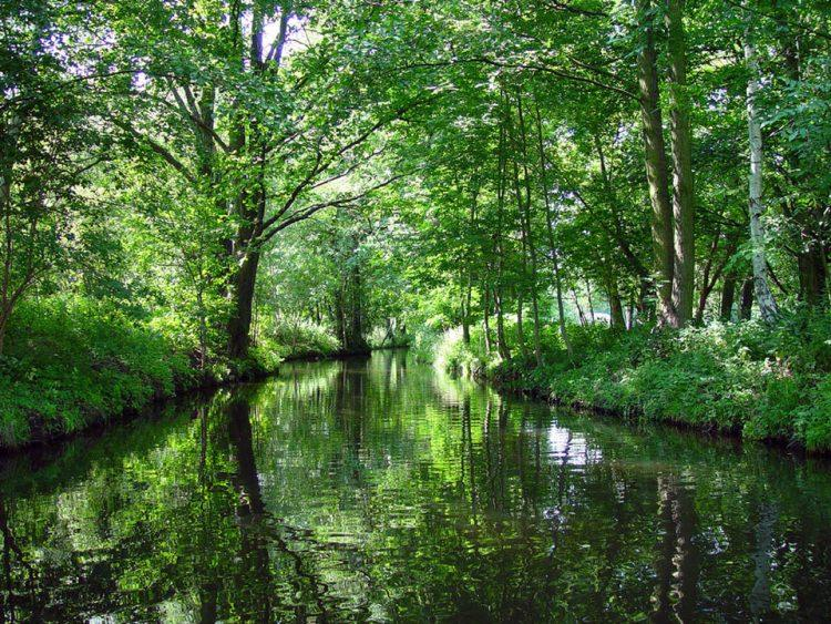 Spreewald - atrakcje i zwiedzanie