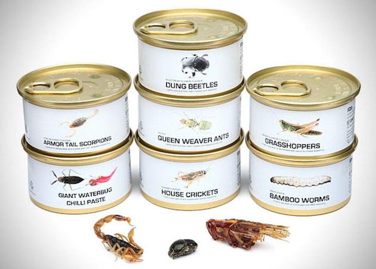 dziwne konserwy - konserwowe robaki z azji