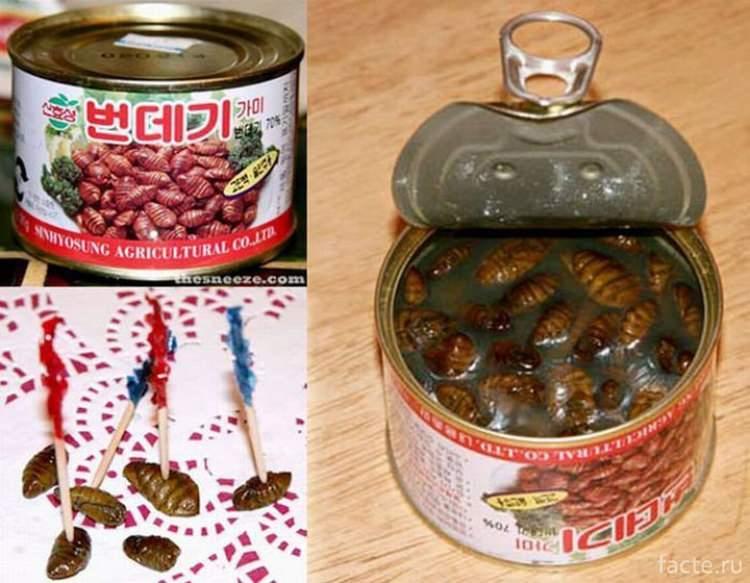 Poczwarki larwy jedwabnika w zalewie
