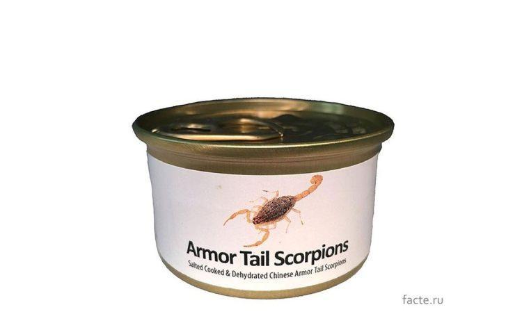 skorpiony w konserwie