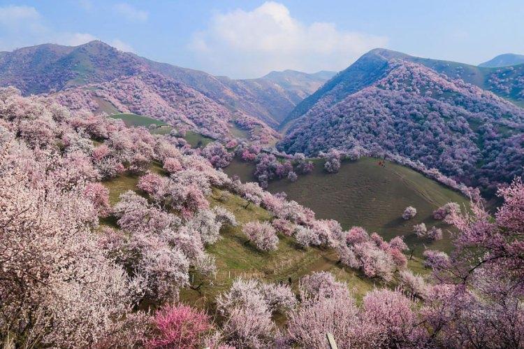 Morelowa dolina w Chinach