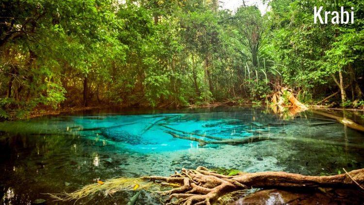 las namorzynowy Tha Pom Khlong w Tajlandii