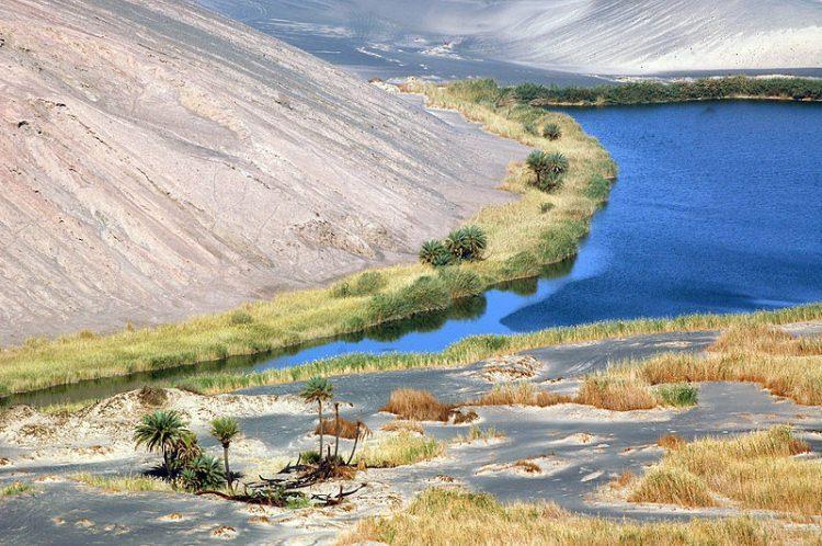 Waw an Namus - oaza komarów Libia