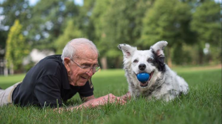 Chaser - najmądrzejszy pies na świecie