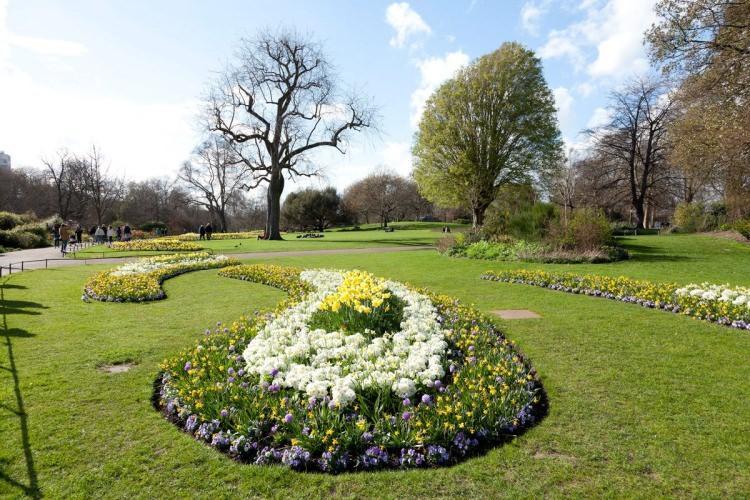 Rose Garden w Hyde Parku