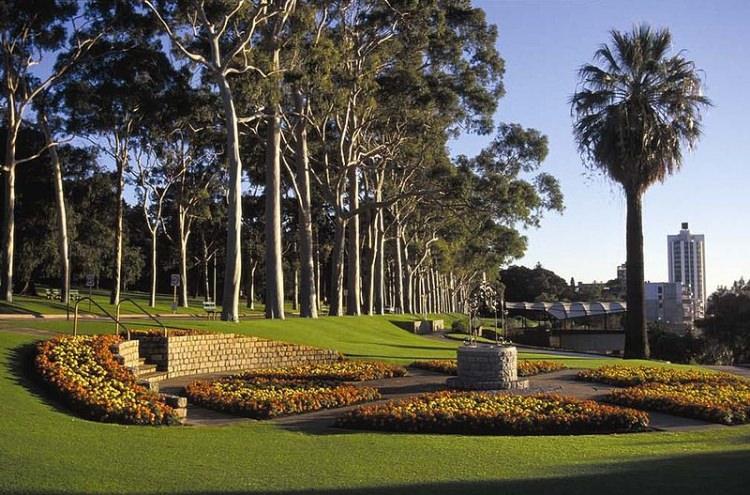 Kings Park w australisjkim Perth
