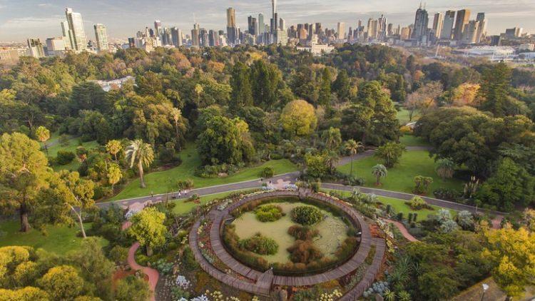 Królewskie ogrody botaniczne w Melbourne