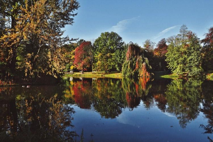 Ogród Królewski w Łazienkach Królewskich