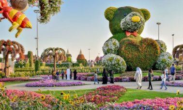 Ogród cudów - Dubai Miracle Garden - największy ogród na świecie