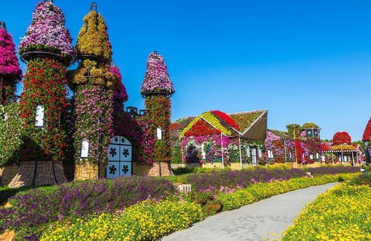 Dubaj Miracle Garden - największy ogród świata