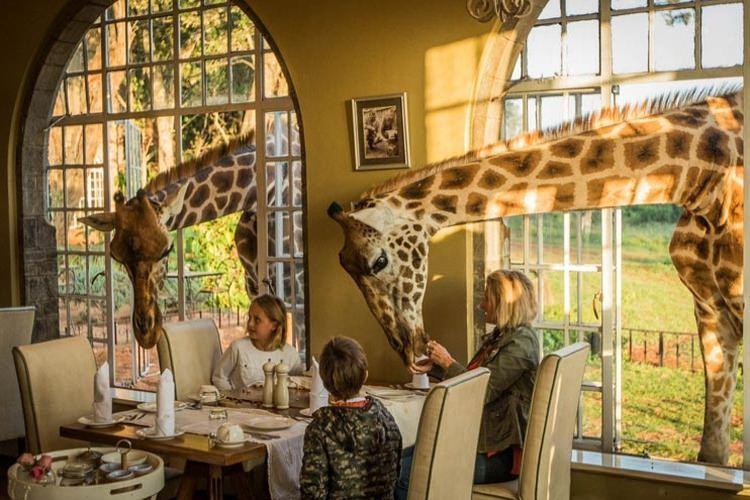 Giraffe Manor hotel Kenia