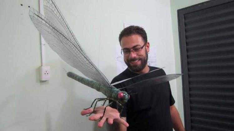 meganeuropsis permiana
