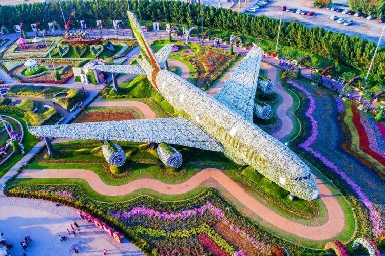 największa na świecie rzeźba zrobiona z kwiatów znajduje się w Miracle Gardens w Dubaju