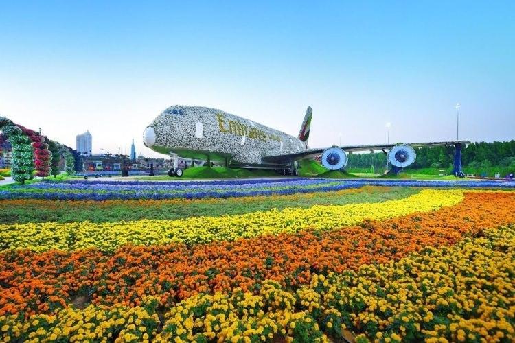 Miracle Gardens w Dubaju