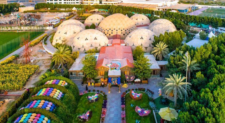 Ogród motyli w Dubaju