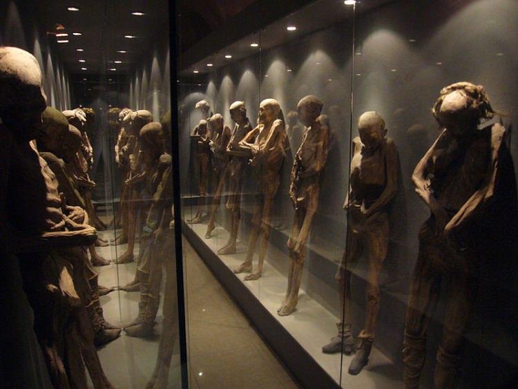 Muzeum Mumii w Meksyku