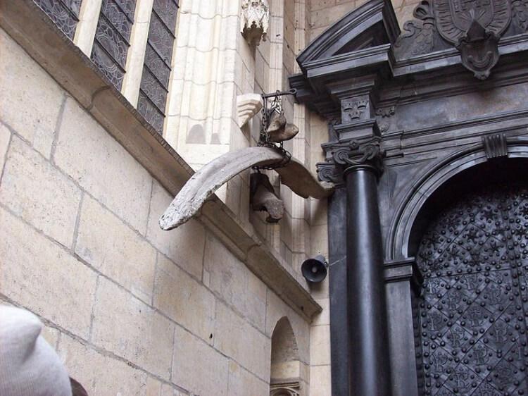 kości przy katedrze na Wawelu