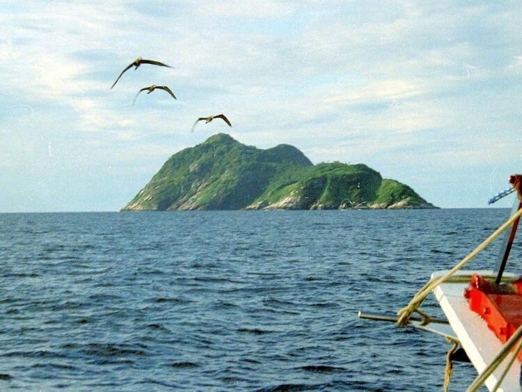 Ilha da Queimada Grande - wyspa węży w Brazylii
