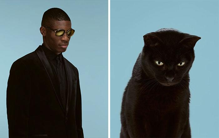 koty podobne do ludzi