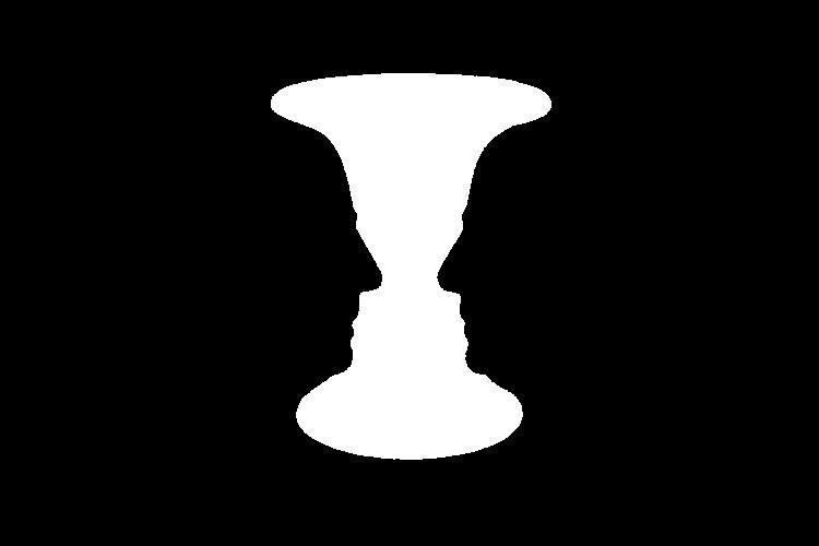 iluzja twarz wazon